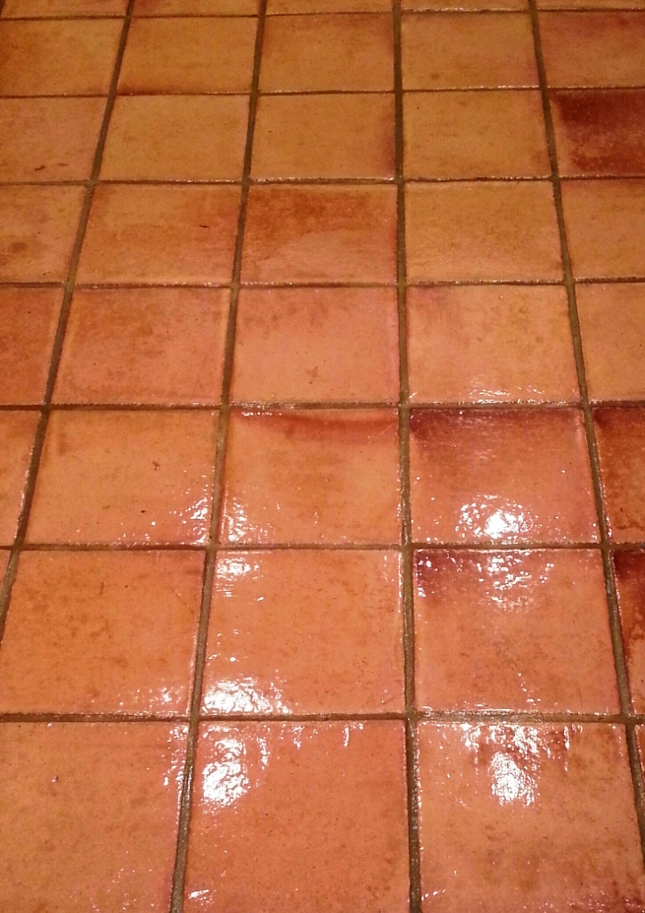 Terracota Tiles After Cleaning