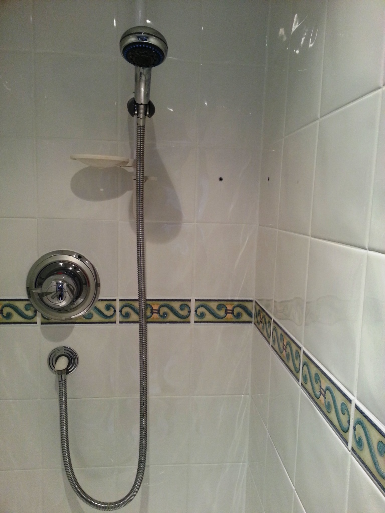 Ceramic tile shower cleaner