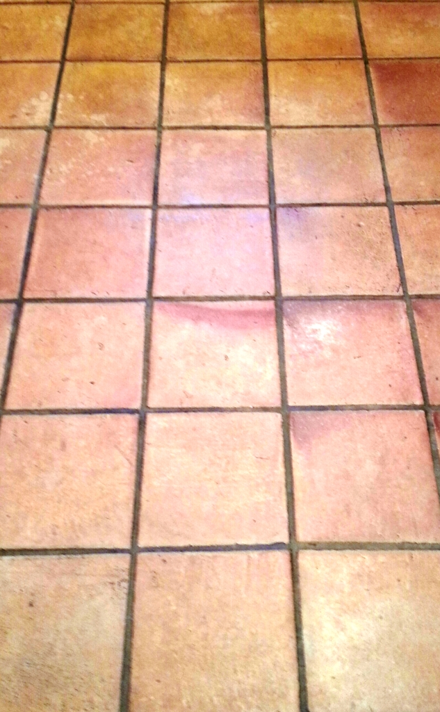 Terracota Tiles Before Cleaning