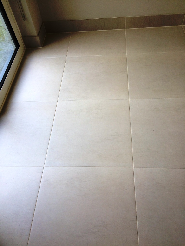 Grout Colouring Limestone Tiled Floor in Hove Park After