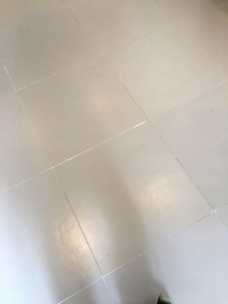 Porcelain Kitchen Tiles Before Grout Colouring in Lewes Kitchen